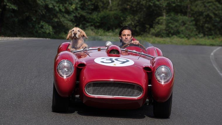 The Art of Racing in the Rain, Milo Ventimiglia, Mi Amigo Enzo